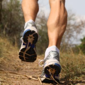 running-wild-kachel