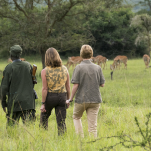 walking-safari